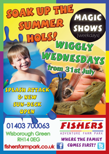 Fishers Farm Summer Poster
